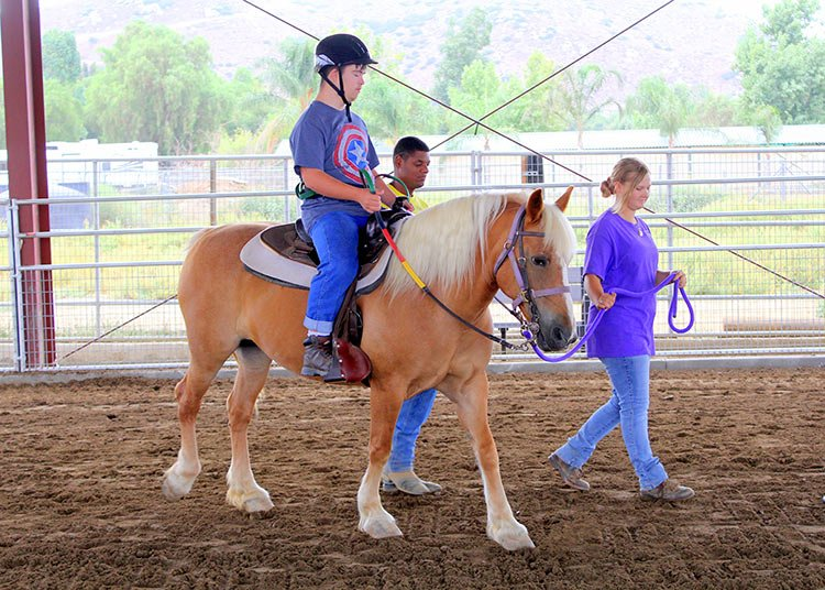 home-programs-therapeutic-riding-01