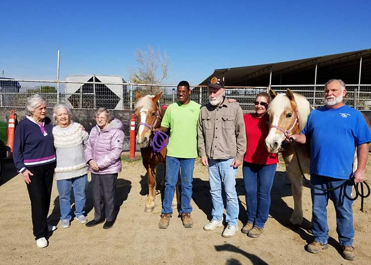 image: Group of elderly men, women, and NDR staff with horses for Horses in the Moment